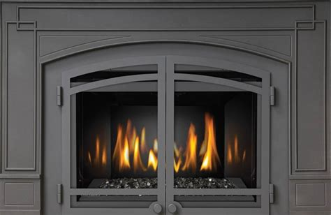 Cast Iron Fireplace Doors by Napoleon Cast Iron Surround Kit With Screened Doors