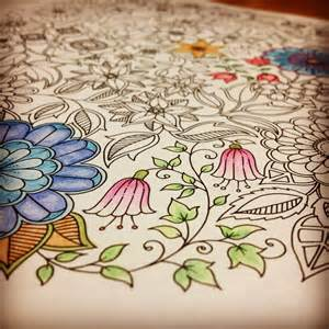 secret garden colouring book wiki basford the of scribbling