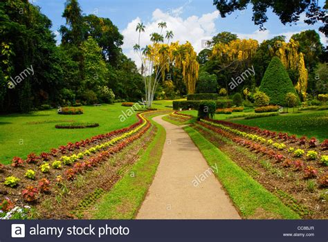 Kandy Botanical Gardens Royal Peradeniya Botanical Gardens Near Kandy Sri Lanka The Park Is Stock Photo Royalty Free