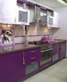 purple kitchen cabinets purple kitchen cabinets modern kitchen color schemes
