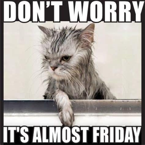 Funny Thursday Meme - thursday almost friday meme memes