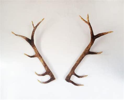 Diy Deer Antler L by A Deer Antler Diy For An Awesome Vegan Friendly Faux