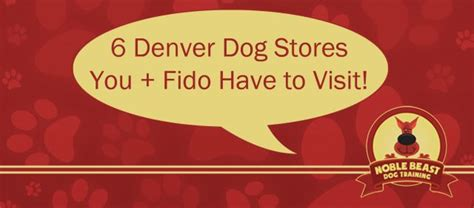 puppy store denver 6 denver pet stores you fido to visit noble beast