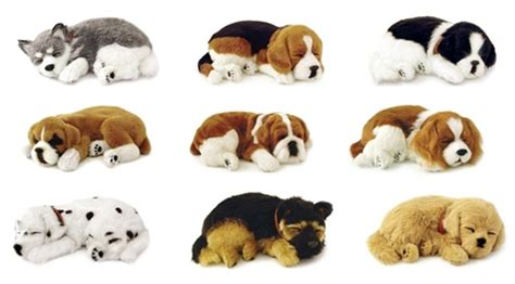 Exported Boneka Anjing Dachshund Real peluches perritos imagui