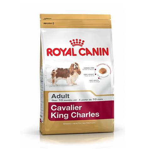 cavalier king alimentazione royal canin cavalier king charles 1 5 kg soloanimali