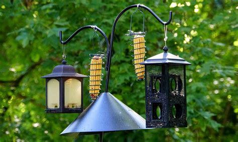 hummingbird feeders   market today