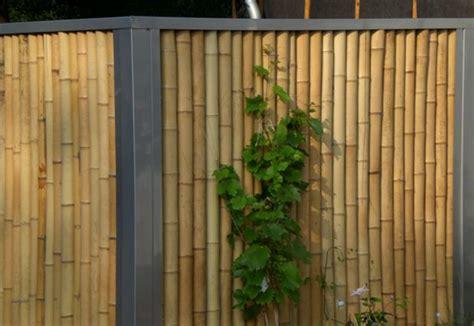 garten und landschaftsbau völkel moso bambuszaun edelstahl big 1143 bambusexperte