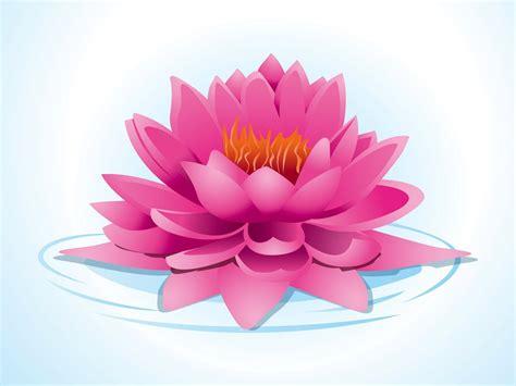 wallpaper kamal flower pink lotus vector art graphics freevector com