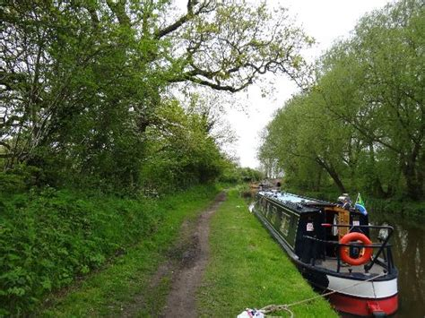 trent  mersey canal staffordshire