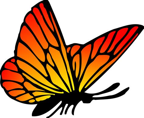 free vector clipart orange butterfly vector clipart image free stock