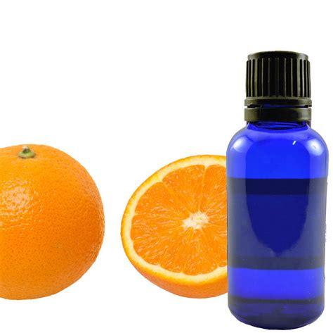 Orange Sweet Essential essential orange sweet willow tree herbs