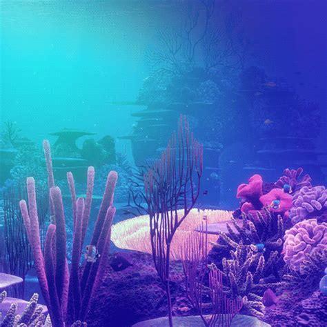 tumblr themes underwater animation seaxxxxx