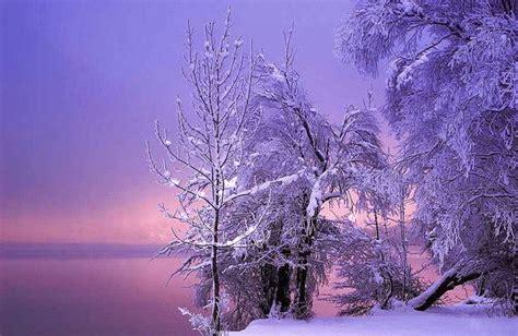 imagenes de invierno bellas husmeando por la red las m 225 s bellas im 225 genes del invierno