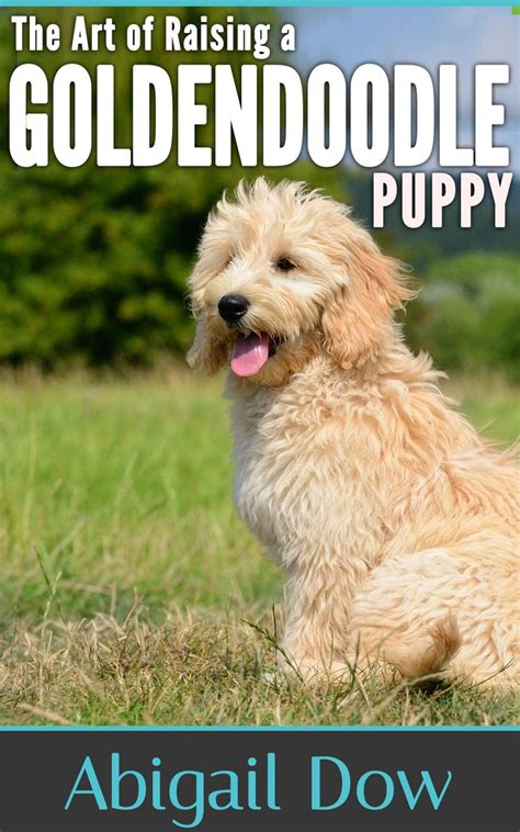 goldendoodle puppy barking 17 best images about walter beasley on f1b