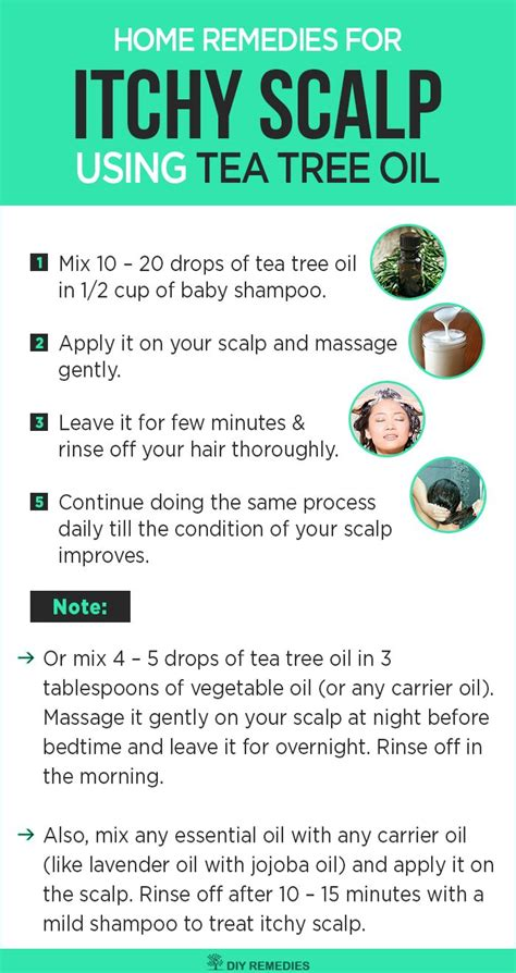 essential for itching best 25 itchy scalp remedy ideas on scalp remedy what causes itchy