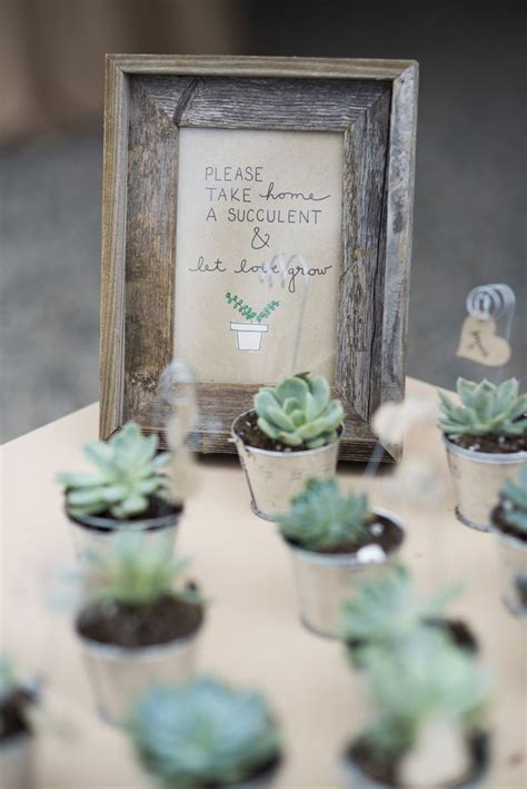 Our Wedding The Favors by The 25 Best Succulent Wedding Favors Ideas On