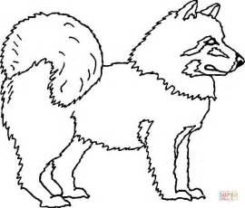 coloring pages of husky dogs american eskimo coloring page free printable