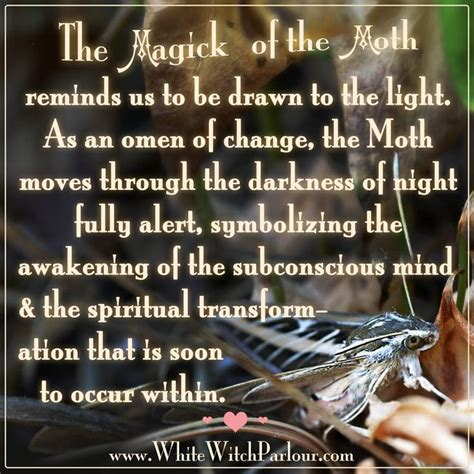 when soul is transforming wisdom from the of the soul books moth symbolism magick transformation witch wisdom