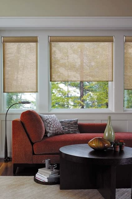 Living Room Roller Blinds Roller Shades Contemporary Living Room Detroit By