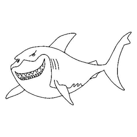 great white shark coloring page animals town animals color