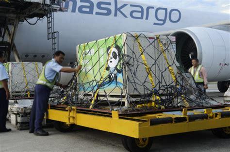 mab kargo tonnage grows     suspends chongqing