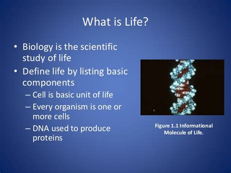 what is biography in science what is life biology science and how we study things