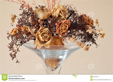dried flowers in a vase stock photo image 50728778