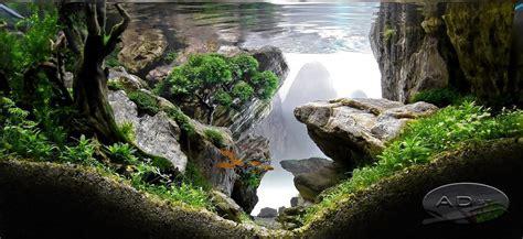 Aquascaping Live Rock Aquascaping Aquariumplants Aquariumplantenshop Nl