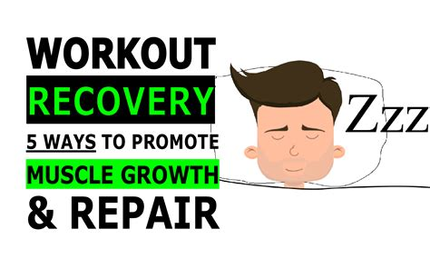 workout recovery  ways  promote muscle growth repair