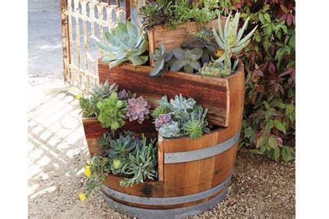 unique planters shelterpop