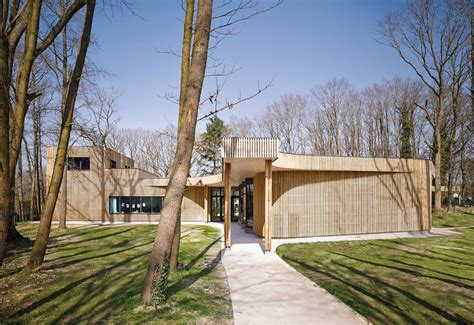 timber architecture timber clad school weaves between the trees in a french