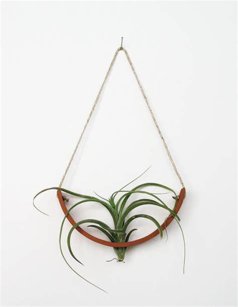 hanging air plant cradle terracotta planter vase