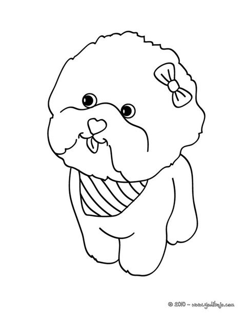 coloring pages of maltese puppies maltese puppy coloring page