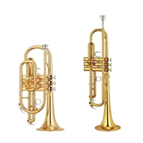 Cornet Pm trumpet v cornet what s the difference normans
