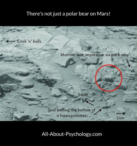 the from mars a study in the psychology of panic books pareidolia information guide