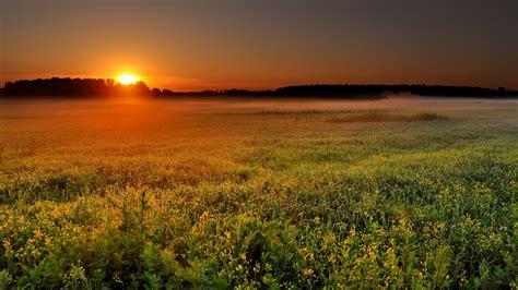 d alba alba alba in ascolto cuore