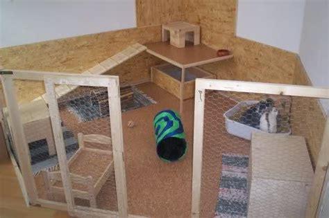 hasengehege innen freilaufgehege im wohnzimmer kaninchen