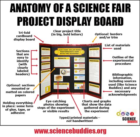 Putting Together A Project Display Board Science Fair Project Poster