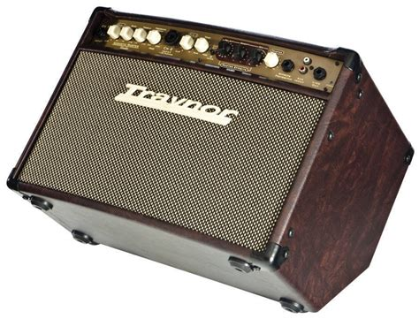 Power Lifier Acoustic traynor 2 channel compact stereo acoustic guitar 65 watts mcquade musical instruments