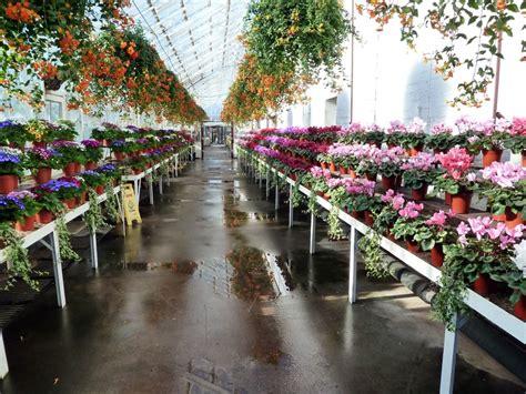 duthie park winter gardens duthie park winter gardens 044 aberdeen gardening