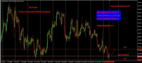 forex tutorial in tamil forex trading training in chennai zyfaluyohod web fc2 com