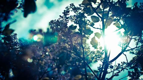 desktop wallpaper project tumblr desktop wallpapers for tumblr desktop backgrounds hipster