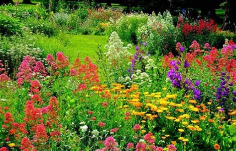 small flower garden pictures osterley park garden great gardens