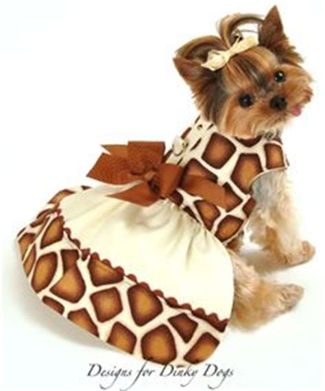 yorkie puppy clothes and accessories 1000 images about yorkies on yorkie yorkie clothes and pet clothes