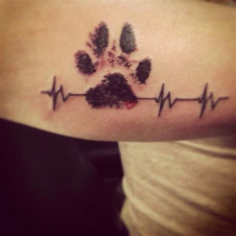 pet tattoo vet tech this is my own dixie s ink paw print