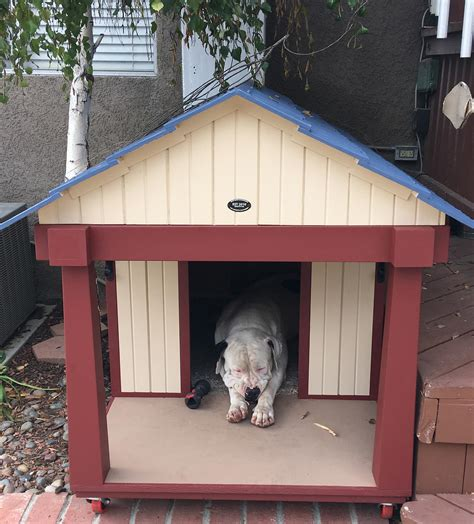 mastiff dog house photos bow wow dog houses