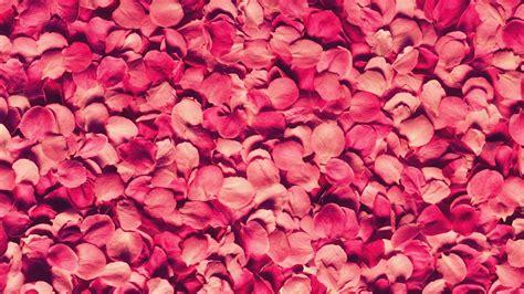 fabrics wallcoverings design source finder florida rose texture walldevil