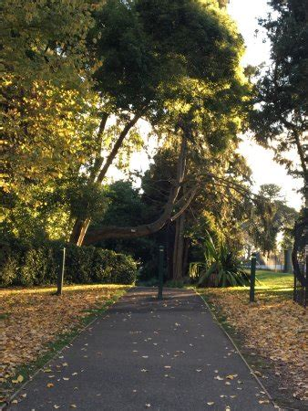 Wombat Hill Botanical Gardens Wombat Hill Botanical Gardens Daylesford Top Tips Before You Go Updated 2017