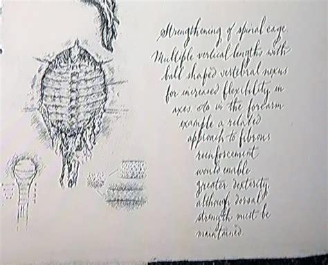 Covenant David S Drawings Book