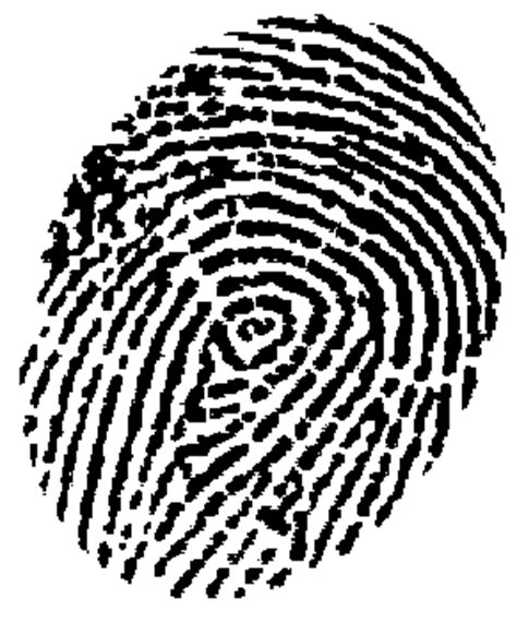 Illinois Fingerprint Background Check Fingerprinting Chicago